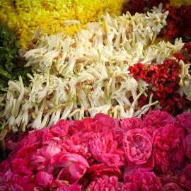 Parfums Floraux 10 ml pour Bougie