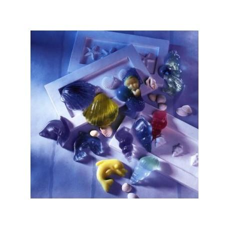 Plaque de Moules pour Savons Assortis Coquillages