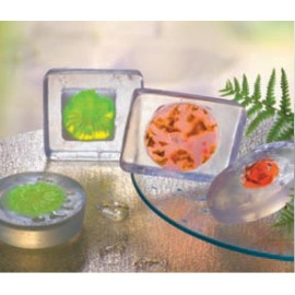 Plaque de moules pour savon